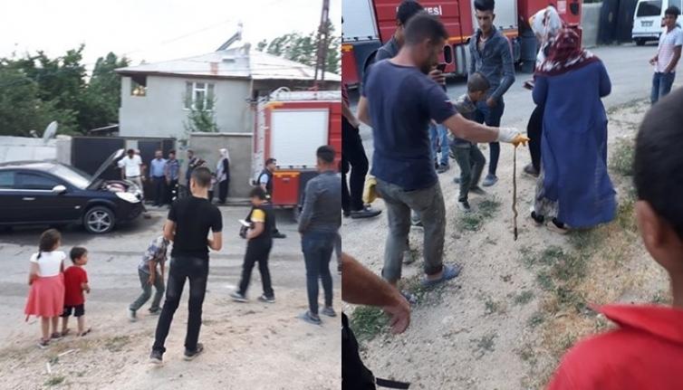 Erciş'te otomobil'in içine giren yılan itfaiyeyi seferber etti