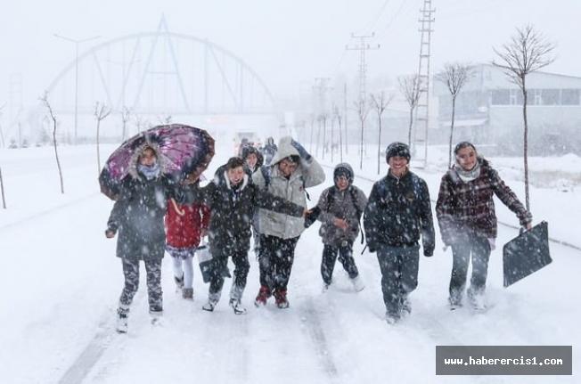 Van'da 359 yerleşim yerine ulaşım kapandı: 5 ilçede okullar tatil edildi