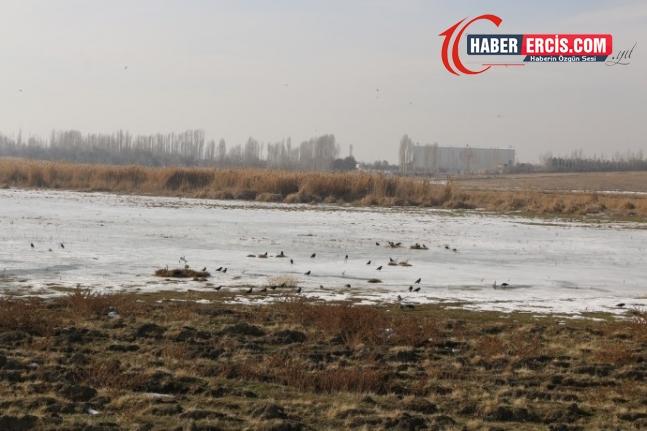 Serhat'ta kuraklık alarm veriyor