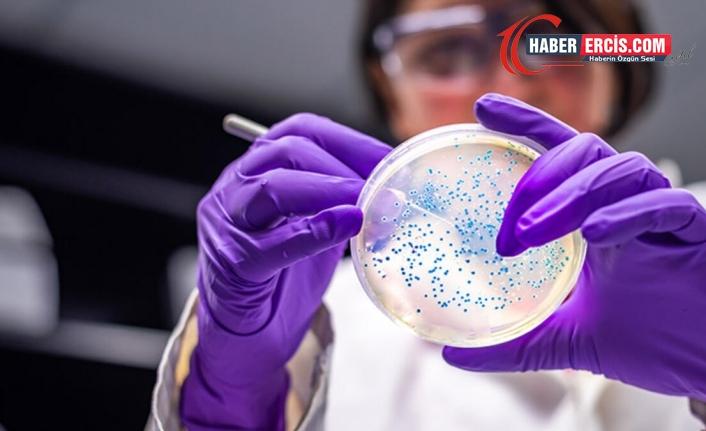 İngiliz matematikçi : Dünyadaki tüm koronavirüsleri kola kutusuna sığıyor