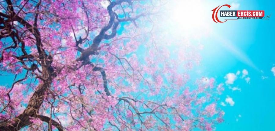 Kürtçe bahar ne demek? Bahar mevsimi Kürtçe anlamı nedir?