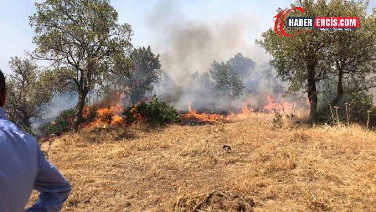 HDP, Şemdinli'deki yangın bölgesinde incelemede bulundu