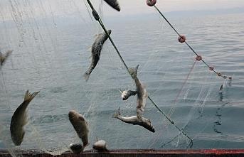 Van Gölü'nde av yasağı başladı