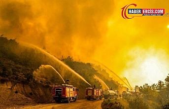 Yangınların perde arkası: Metalaştırılan doğa