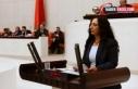 HDP Van Milletvekili Orhan'dan 8 Mart soru önergesi...