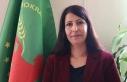 DBP eski il eşbaşkanına 7 yıl 6 ay hapis cezası