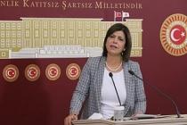 HDP Grup Başkanvekili Beştaş: Seçim yasalarıyla oynayan iktidar gidicidir