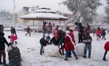 Çaldıran ve Çatak'ta okullara kar tatili