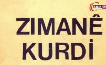 Kürtçe Endişe Etmek Ne Demek? Kürtçe Endişelenmek Nasıl Denir?