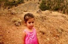 5 yaşındaki çocuğun öldürülmesiyle ilgili 1 kişi tutuklandı