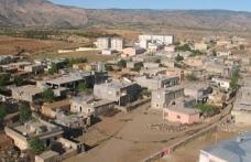Şırnak'ta susuz bırakılan 13 köy için komisyon kurulması istendi