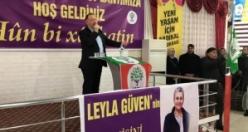 HDP Eş Genel Başkanı Sezai Temelli Erciş