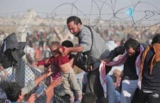 Suriyeli mültecilerin yüzde 56'sı ülkesine dönmek...