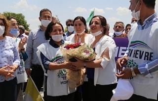 Demokrasi yürüyüşçülerine Urfa'da coşkulu...