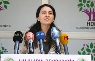 Günay: Kürt düşmanlığının sonucu DTK kriminalize...