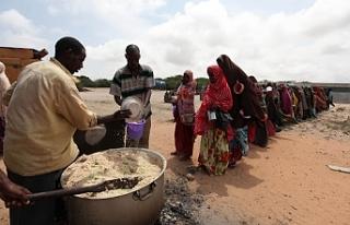 BM: 3 milyardan fazla insan sağlıklı beslenemiyor