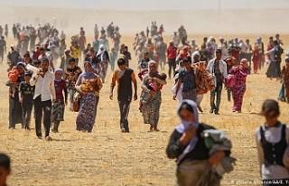 Tarih boyunca 74 kez katliama uğradılar: Êzidîler...