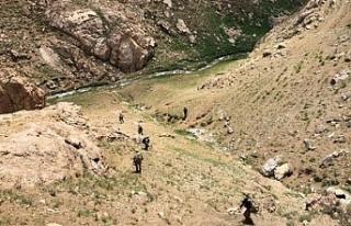 Van'da Nordiz bölgesine askeri operasyon