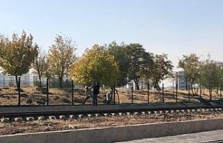 Diyarbakır'ı ikiye bölecek duvarın yapımına...