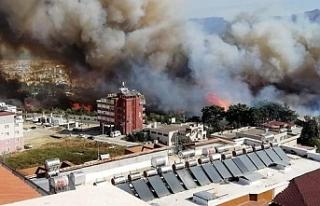 Hatay'da orman yangını: Tahliye işlemleri başlatıldı