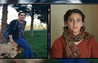 Van'da Kadın gazeteciler erkek adli tutukluların...