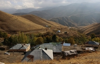 Hakkari Barosu Başkanı: Sınır hattında ölümler...