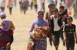 Êzidî aydınlardan Barzani'ye: Babanın düşmanından...