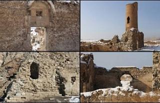 Tarihi Van Kalesi yıkılma tehlikesi ile karşı...