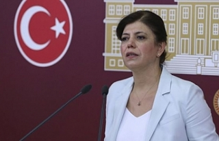 Beştaş, AKP'li Özlem Zengin'e çıplak arama...