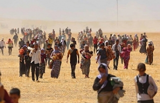 Gazeteci Eliyas: Êzidîlerin YBŞ'den başka kimseye...