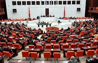 HDP'li Dağ Meclis'te Kürtçe konuştu, AKP-MHP...