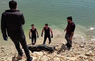 Su kenarında bir erkeğin cenazesi bulundu