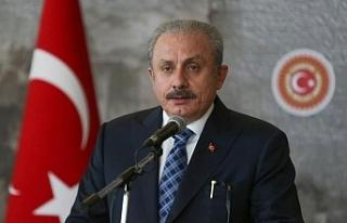 Şentop'un Gergerlioğlu ve parti kapatma savunması:...