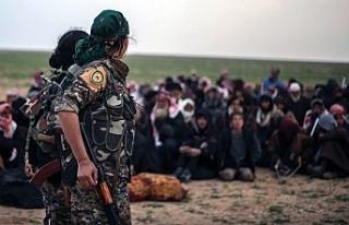 Hol Kampı'ndaki operasyonlarda 158 DAİŞ'li...