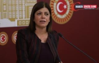 Beştaş: Kürt sorunu sınır ötesi operasyonlarla...