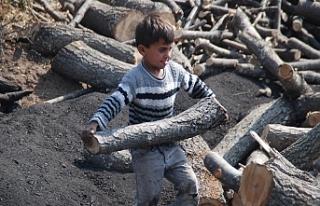 İSİG: 8 yılda en az 513 çocuk çalışırken yaşamını...