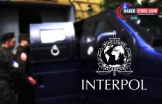 Kıbrıs'a Interpol girse hükümet kalmaz!