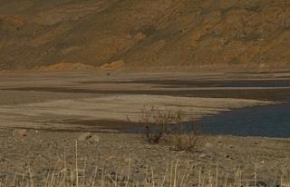 Van'da Zernek Barajı kuruma tehlikesiyle karşı...