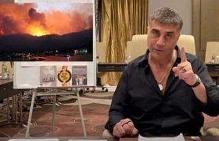 Sedat Peker: 'Yangınları HDP'liler çıkarıyor'...