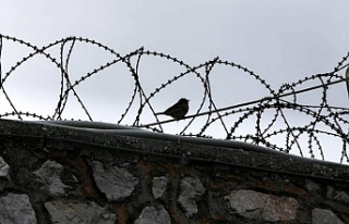 Tutukluların eylemi 219'uncu gününde