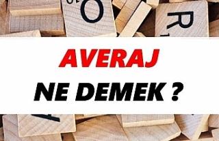Averaj Ne Demek? TDK'ya Göre Averaj Sözlük Anlamı...