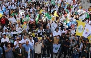 DBP Eş Genel Başkanı Aydeniz: Kürtler Ortadaoğu'yu...
