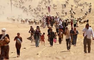 HDP: Êzidî Soykırımı tanınmalı