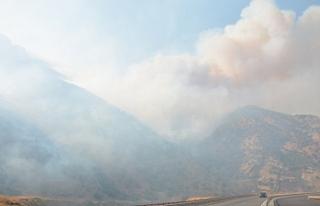 Bitlis'te yangın sürüyor: Binlerce hektar küle...