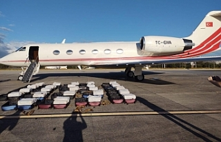 Brezilya'da kokainle yakalanan uçağın yardımcı...