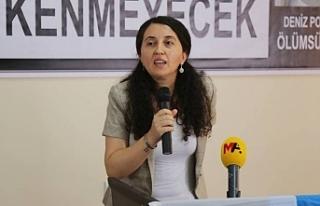Günay: Savaş politikalarına cevabımız HDP'yi...