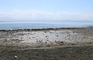 Kuraklık Van Gölü'nü etkiledi: Su seviyesi 3...