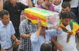Öldürdükleri 35 günlük bebeğe 'terörist'...