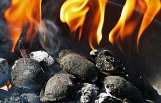 Van'da 4 kişi kömür sobasından zehirlendi