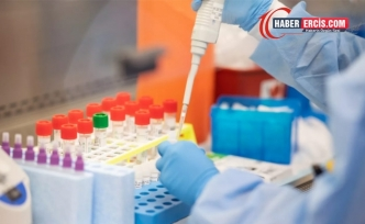 Yeni kan testi 50'den fazla kanser türünü ortaya çıkarabilir